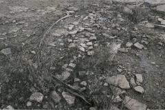 Suelo_piedras